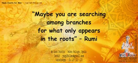 rootsRumi.png
